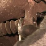 Замена тормозных колодок и дисков Opel Insignia